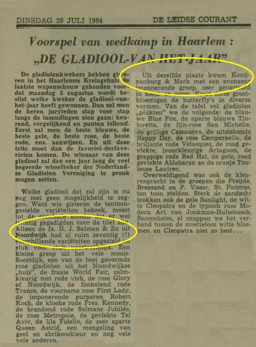 gladiool