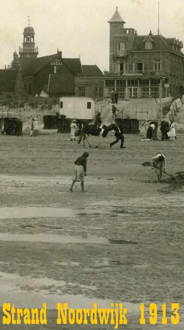 strandnoordwijk